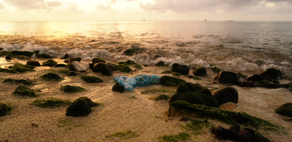 Sinn von Plastiktüten