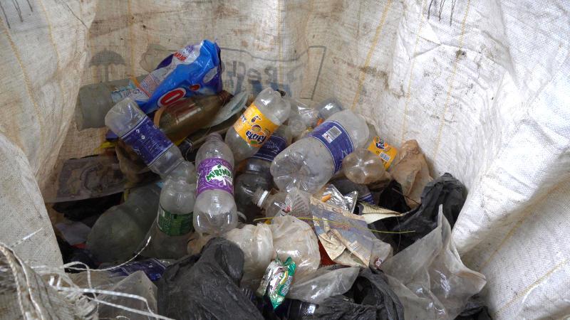 ergebnis cleanup sansibar