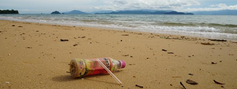ozeankind Aktionen