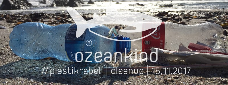 weltweites ozeankind cleanup