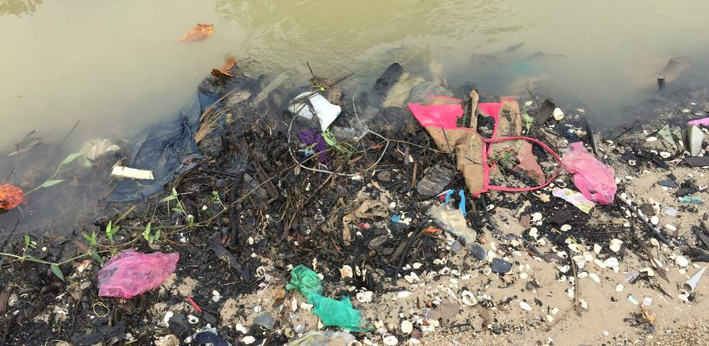 Ergebnis plastikrebell cleanup