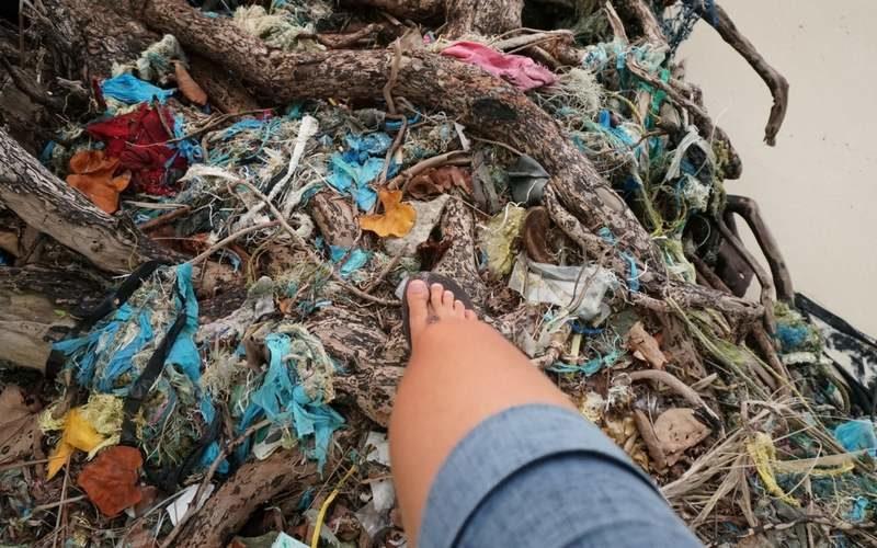 Plastikmüll aus Deutschland