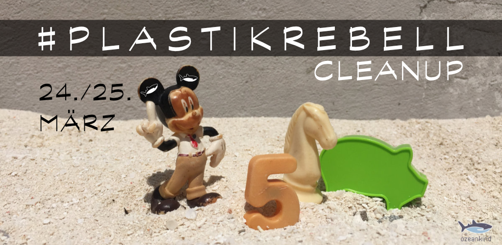 Plastikrebell Cleanup März